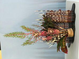 agm porcupine