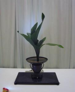 koryu 1 2008