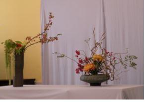 shokos-displa-ikebana