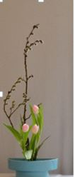ikebana march demo 2