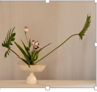 ikebana march demo 3