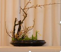 ikebana march demo 4