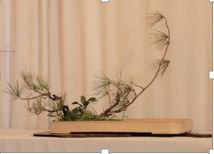 ikebana march demo 5